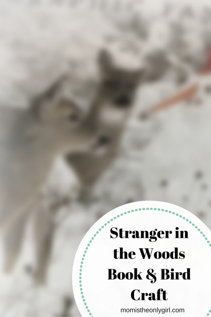 Stranger in the Woods Cardinal craft https://momistheonlygirl.com