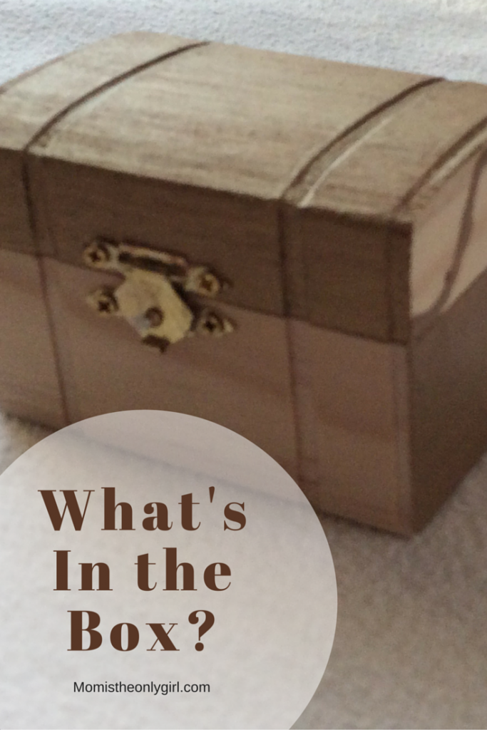 What's in the box? A sense of hearing experiment with Christmas items for an extra challenge! (at Mom is the Only Girl https://momistheonlygirl.com)